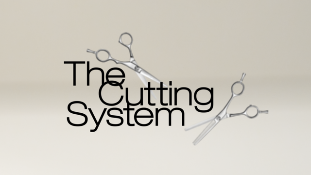 The Cutting System